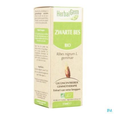 Herbalgem Zwarte Bes Maceraat 15ml