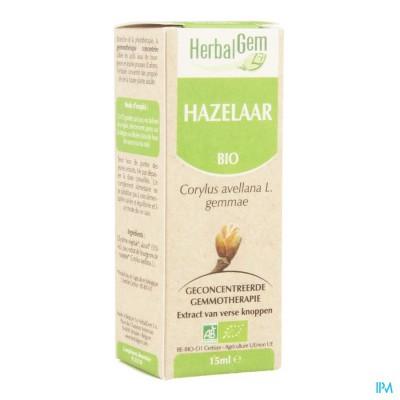 Herbalgem Hazelaar Maceraat 15ml