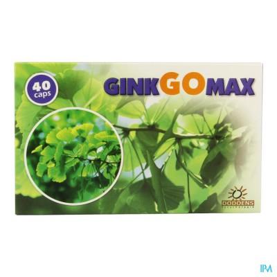 Ginkgomax Caps 40