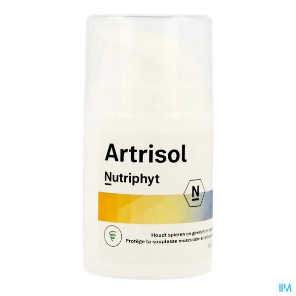 Artrisol Zalf Pot 50ml 0619